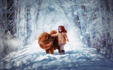снег, зима, собака, девочка, ребенок, платок, пальто, тибетский мастиф, чау-чау