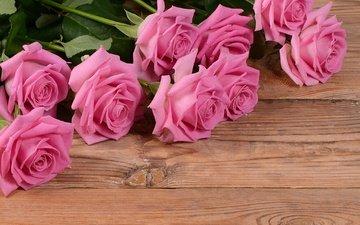 цветы, фон, розы, доски, розовые