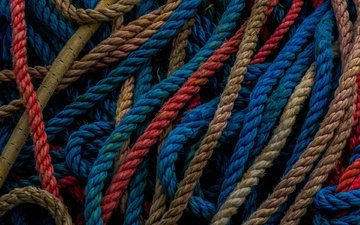 macro, color, rope