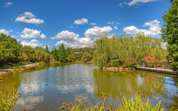 небо, цветы, трава, облака, деревья, солнце, зелень, мостик, парк, пруд, островок, австралия, hunter valley gardens, pokolbin