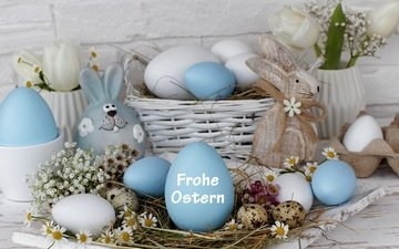 flowers, rabbit, still life, eggs, decoration, spring