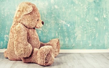 wall, bear, toy, sitting