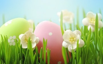 flowers, grass, easter, eggs, spring, happy, the painted eggs