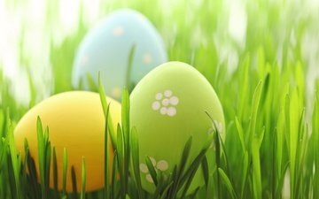 grass, easter, pastel, eggs, spring, happy, the painted eggs