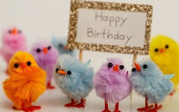 colorful, holiday, birthday, chickens, happy birthday