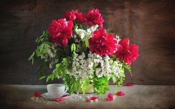 цветы, букет, чашка, натюрморт, пионы, акация