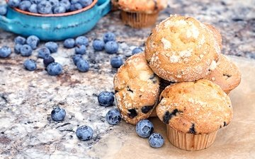 food, blueberries, cakes, cupcakes, muffins, maffin, bluberries