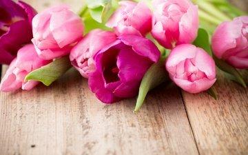 цветы, букет, тюльпаны, розовые, дерева, красива, тульпаны, цветы, парное, пинк
