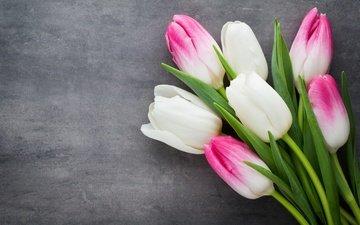 цветы, букет, тюльпаны, розовые, белые, белая, красива, цветы, парное, весенние, пинк