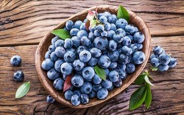 ягоды, лесные ягоды, черника, корзинка, голубика, парное, черничный