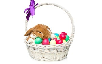 basket, rabbit, easter, eggs, decoration, spring, happy, bunny, the painted eggs