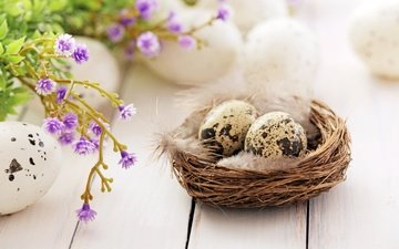 flowers, feathers, easter, socket, eggs, decoration, spring, happy, the painted eggs