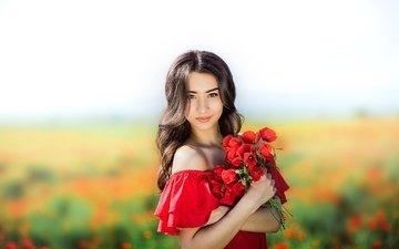 цветы, девушка, поле, брюнетка, лето, маки, плечи, букет, декольте
