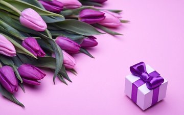 bouquet, tulips, pink, gift, romantic, bow, flowers, fresh, love, purple