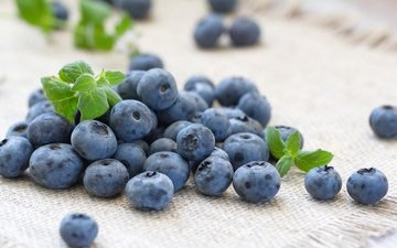 ягоды, лесные ягоды, черника, голубика, парное, черничный