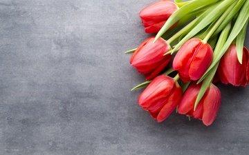 цветы, красные, букет, тюльпаны, краcный, тульпаны, цветы, парное, весенние