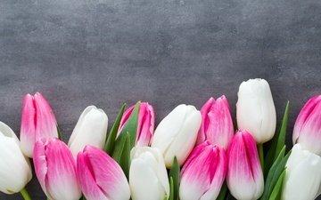 цветы, букет, тюльпаны, розовые, белые, белая, тульпаны, цветы, парное, весенние, пинк