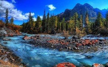 trees, water, river, mountains, nature, stones, stream, running, stream mountain, fresh water, rapids