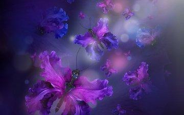 вода, лепестки, бабочки, butterflies, флористика, лиловая