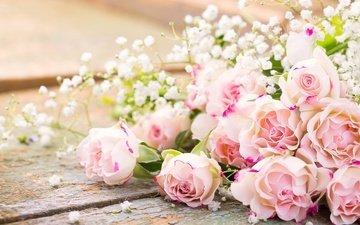 цветы, розы, букет, романтик, цветы, роз, пинк