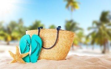 солнце, море, песок, пляж, лето, ракушки, морская звезда, песка, seashells, каникулы, сланцы, летнее