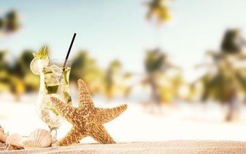солнце, море, песок, пляж, лето, ракушки, коктейль, морская звезда, песка, мохито, seashells, каникулы, летнее