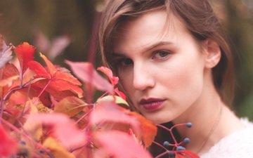 глаза, девушка, портрет, листва, осень, модель, gornostai_nastya