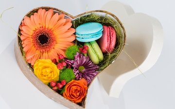 flowers, heart, gift, box, cookies, macaroon