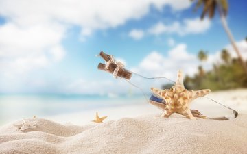 the sun, sea, sand, beach, summer, palm trees, bottle, starfish, vacation