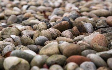 природа, камни, галька, текстура, пляж, камень, milada vigerova