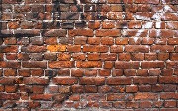 текстура, узор, стена, красный, кирпич, кирпичи