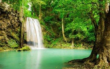деревья, река, лес, пейзаж, водопад, тропики, джунгли
