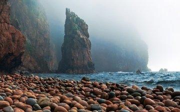 скалы, камни, берег, море, океан