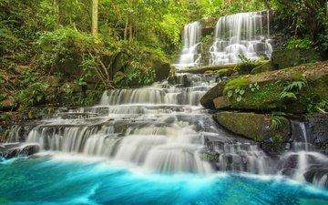 река, лес, пейзаж, водопад, тропики, джунгли