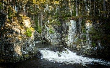 деревья, река, скалы, лес, великобритания, поток, шотландия, соединенное королевство, inverpattack lodge, pattack falls