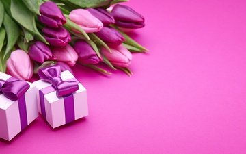 gifts, bouquet, tulips, pink, romantic, bow