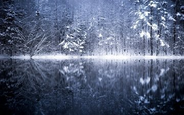 trees, lake, river, snow, nature, winter, reflection, japan