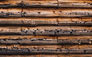 дерево, текстура, стена, доски