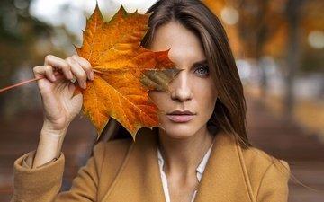 девушка, портрет, взгляд, осень, лист, лицо, клен, шатенка, пальто, голубоглазая, alexey slesarev, яна захарова