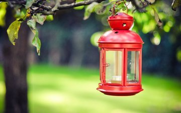 red, lantern, candle, flashlight