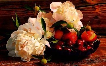 цветы, арт, рисунок, фрукты, черешня, ягоды, вишня, натюрморт, пионы
