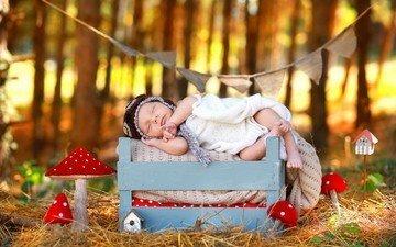 природа, осень, сон, дети, ребенок, младенец, мухомор, ящик