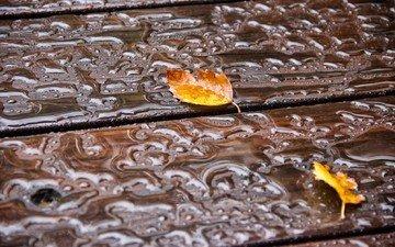 вода, листья, капли, осень, деревянная поверхность