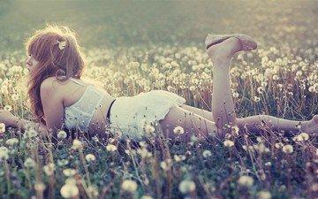 цветы, девушка, настроение, одуванчики, азиатка, рыжеволосая, лежа, лежа кари энн уэйман, кари энн уэйман