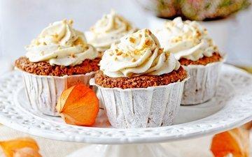 sweet, cakes, cupcakes, cream