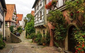 цветы, деревья, кусты, дома, улица, машины, германия, бад-вимпфен
