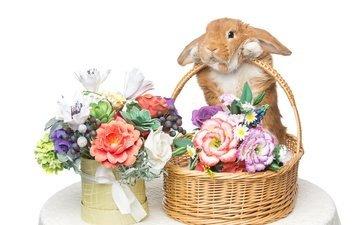 цветы, корзина, кролик, пасха, букеты