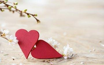 цветы, ветки, весна, сердечки, почки