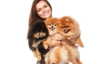 девушка, улыбка, лицо, собаки, шпиц