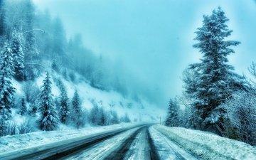 road, trees, snow, winter, fog